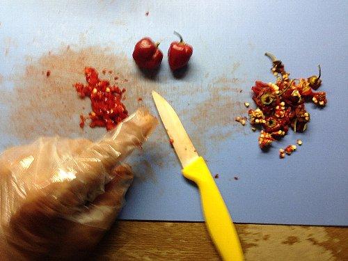 ハバネロのレシピはオイル漬けに限る
