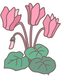 ガーデニング春夏秋冬!月ごとの作業のヒントを教えます。