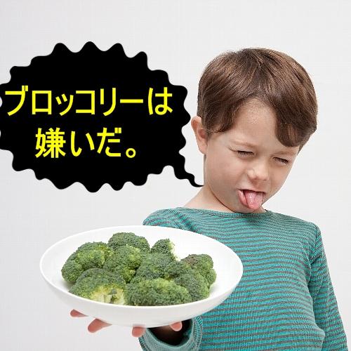 子どもの偏食の原因は内部イメージにあり