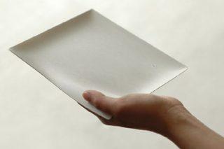 伊藤景パック産業が地球に優しい高級紙皿WASARAで勝負